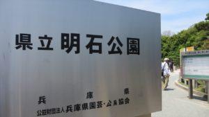 明石公園1