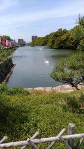 明石公園3